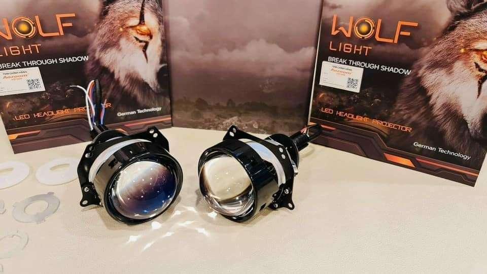 Bi Wolf Light